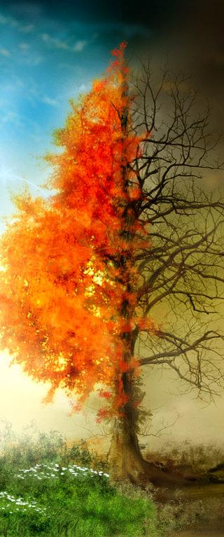 Espiritismo - La imposibilidad de las penas eternas